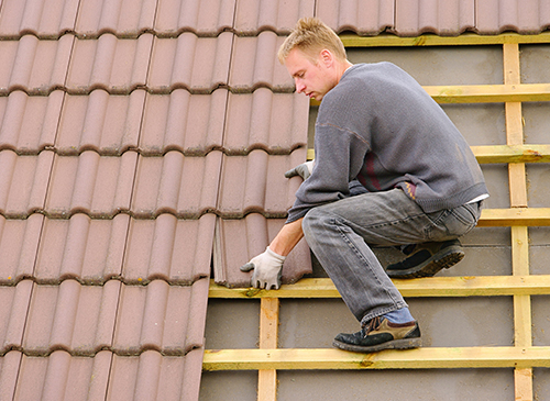 Roof Repair, and Asphalt Shingles in Greeley, CO